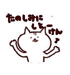 博多ん猫 vol.1(個別スタンプ:28)