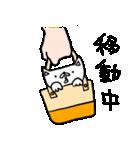 子ねこのみかん(個別スタンプ:06)