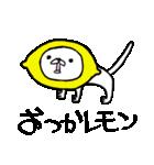 子ねこのみかん(個別スタンプ:10)