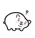 白玉ネコのたま