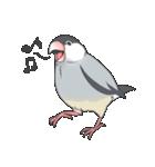 文鳥のスタンプ(個別スタンプ:03)