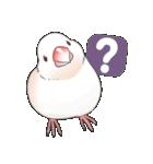 文鳥のスタンプ(個別スタンプ:08)