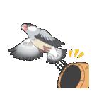 文鳥のスタンプ(個別スタンプ:09)