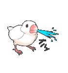文鳥のスタンプ(個別スタンプ:34)
