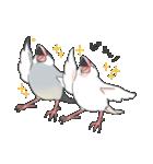 文鳥のスタンプ(個別スタンプ:39)