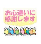 小鳥と音楽・ピアノの先生(個別スタンプ:18)