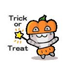 かぼちゃパンツの猫さん(個別スタンプ:23)
