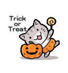 かぼちゃパンツの猫さん(個別スタンプ:24)