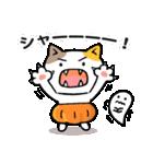 かぼちゃパンツの猫さん(個別スタンプ:31)