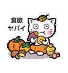 かぼちゃパンツの猫さん(個別スタンプ:37)