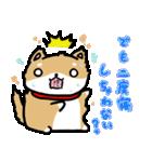 柴犬のしーたん(個別スタンプ:04)
