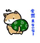 柴犬のしーたん(個別スタンプ:07)