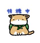柴犬のしーたん(個別スタンプ:08)