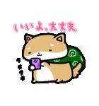 柴犬のしーたん(個別スタンプ:11)