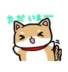 柴犬のしーたん(個別スタンプ:15)