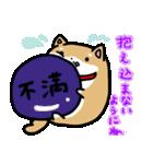 柴犬のしーたん(個別スタンプ:19)