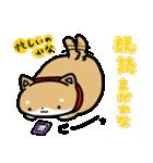 柴犬のしーたん(個別スタンプ:20)
