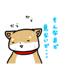 柴犬のしーたん(個別スタンプ:21)