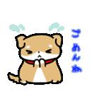 柴犬のしーたん(個別スタンプ:22)