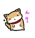 柴犬のしーたん(個別スタンプ:25)