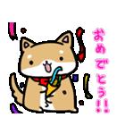 柴犬のしーたん(個別スタンプ:28)