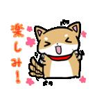 柴犬のしーたん(個別スタンプ:29)