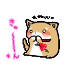 柴犬のしーたん(個別スタンプ:34)