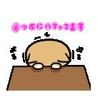 柴犬のしーたん(個別スタンプ:36)