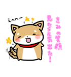 柴犬のしーたん(個別スタンプ:37)