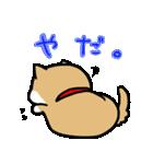 柴犬のしーたん(個別スタンプ:39)