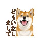 さすが!柴犬(敬語編)(個別スタンプ:03)