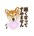 さすが!柴犬(敬語編)(個別スタンプ:20)