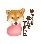 さすが!柴犬(敬語編)(個別スタンプ:31)