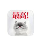 絵本に出てきそうな猫(個別スタンプ:03)