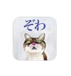 絵本に出てきそうな猫(個別スタンプ:22)
