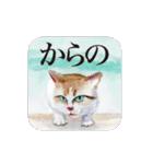絵本に出てきそうな猫(個別スタンプ:24)