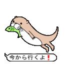 絵文字好きなカワウソ(個別スタンプ:03)