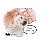 柴犬のここが好き5〜英語版〜(個別スタンプ:3)
