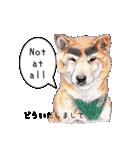 柴犬のここが好き5〜英語版〜(個別スタンプ:5)