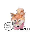 柴犬のここが好き5〜英語版〜(個別スタンプ:6)