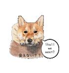 柴犬のここが好き5〜英語版〜(個別スタンプ:10)