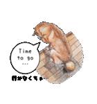 柴犬のここが好き5〜英語版〜(個別スタンプ:32)
