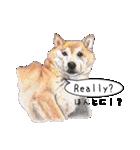 柴犬のここが好き5〜英語版〜(個別スタンプ:33)