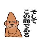 良いクマ、悪いクマ、モテクマ+α(個別スタンプ:12)