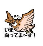 ミミズクづくし(個別スタンプ:9)