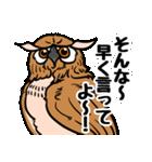 ミミズクづくし(個別スタンプ:35)
