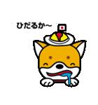 柴犬くんの日常 熊本弁編(個別スタンプ:2)