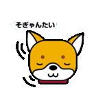 柴犬くんの日常 熊本弁編(個別スタンプ:4)