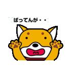 柴犬くんの日常 熊本弁編(個別スタンプ:10)
