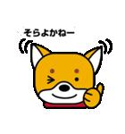 柴犬くんの日常 熊本弁編(個別スタンプ:14)